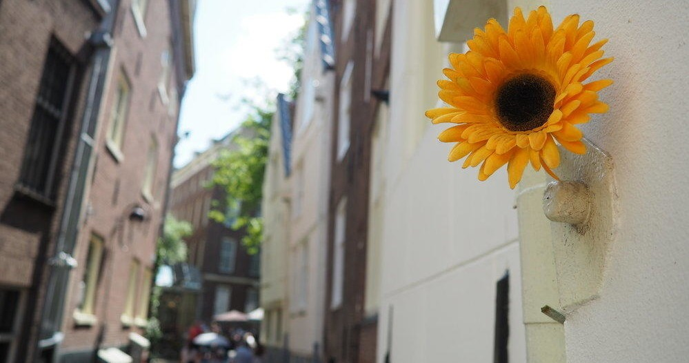 A yellow artificial flower in closeup, attached to the outer wall of the Begijnhof